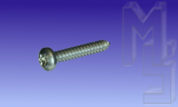 Rinnen-Befestigungsschraube, 4,8 x 32 mm Typ 1, Edelstahl Linsenschraube